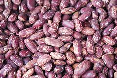Planteprotein: Bra for fruktbarheten